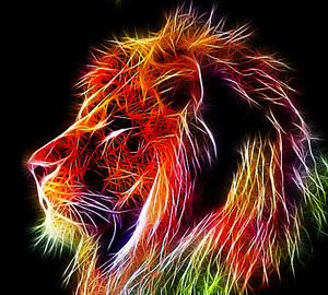 Colourful Lion,Colourful ,Lion
