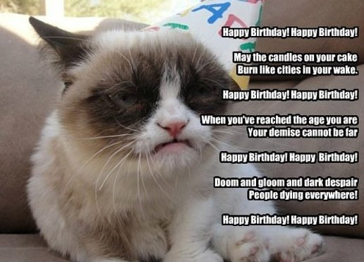 Happy Birthday By Grumpy Cat,Happy Birthday, By Grumpy Cat,Happy Birthday By, Grumpy Cat,Happy ,Birthday,Grumpy ,Cat,funny,Grumpy Cat meme,meme,Grumpy Cat joke,Grumpy Cat jokes,Grumpy Cat wishing