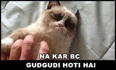 Naa Kar Gudgudi Hoti Hai,bc,manhoss billi,billi,manhoss,Manhos ,billi,Naa Kar bc Gudgudi Hoti hai,grumby cat,funny,meme,funny cat meme,grumby cat meme,manhoss billi meme