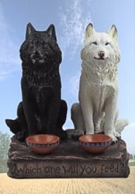 Two Wolves and the Circle of Friends,Two Wolves,the Circle of Friends,Wolf Story,Remember this,best read ever,lover ,love,breakup,broken heart,remember this,story must read,story,message,teacher,The Wolf Fight Inside Us,wolf fight,fight,wolf,good,bad,joy,envy,sorrow,guilt,peace,joy,humility,kindess,volience,truth,anger,arrogance,guilt,resentment,inferiority,lies,pride,ego,teaching,understanding