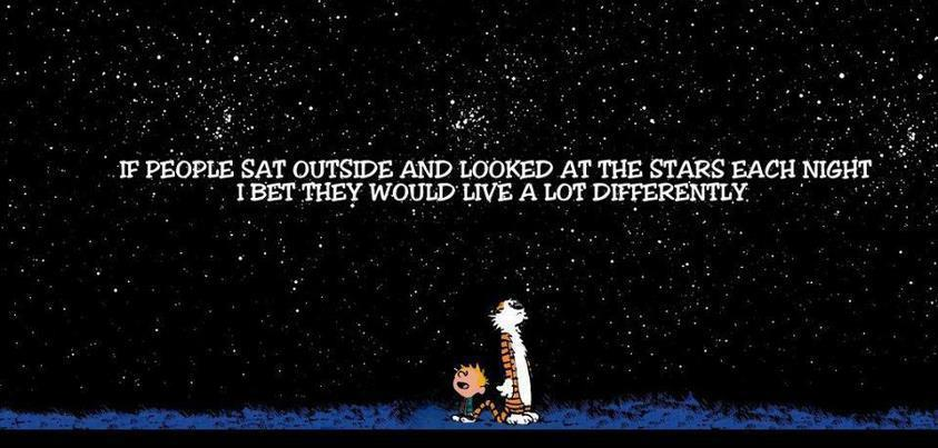 Looking At Stars,Have You Seen The Sky,looking at sky in night,twinkel twinkle little stars,Look at the stars each night,live a lot differently,living differently,Calvin And Hobbes,Calvin And Hobbes Comic,Comic,Looking At Stars Each Night