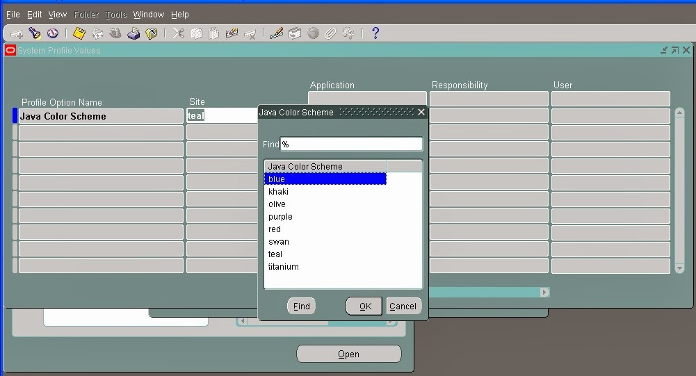 Changing the look and feel of Oracle EBS environment,Oracle EBS environment,look and feel,Oracle Setting,Oracle System Administrator Setting