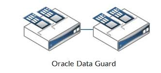 Some Data Guard Queries,Oracle Data Guard Queries,Important Data Guard Queries,Oracle Important Data Guard Queries,Oracle DBA,Important Oracle Data Guard Queries,Oracle Data Guard Queries,Oracle Queries